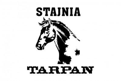 Projekt logo stajni koni